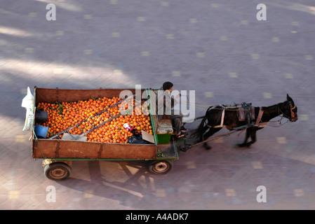 Horse-drawn orange cart Marrakech, Morocco - Stock Photo