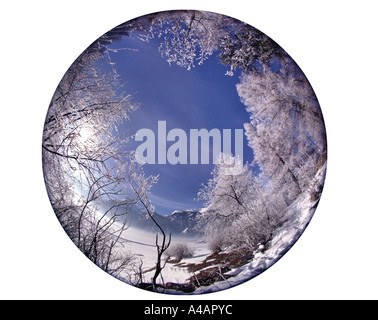 DE - BAVARIA:  Wintertime near Bad Toelz - Stock Photo