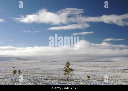 Winter time on Dava Moor Moray. XPL 4677-439 - Stock Photo