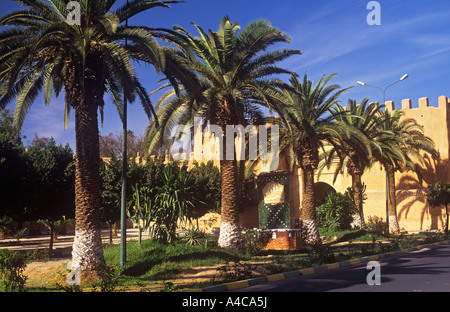City walls and palm trees Taroudannt Morocco - Stock Photo