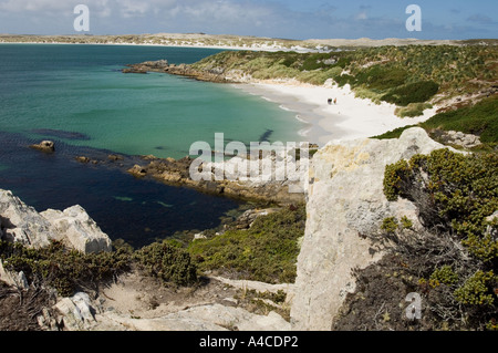 A view of gypsy cove and yorke bay, near port stanley in the falkland Islands - Stock Photo