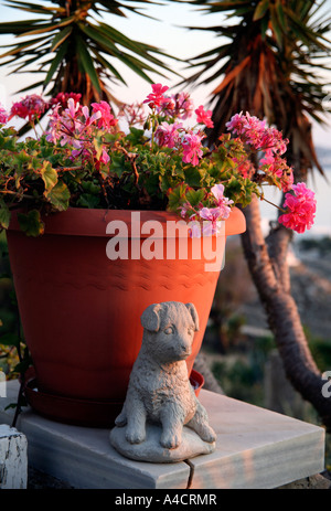 Flower pot with dog statue - Stock Photo