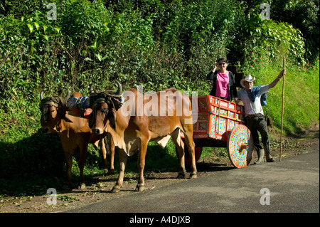 Traditional Ox-cart with farmer and tourist near Al Norte, Valle Central & Highlands, Costa Rica - Stock Photo