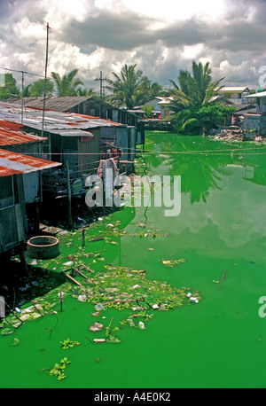 Polluted water at Kao Seng, a village south of Songkhla, southern Thailand. EA7 - Stock Photo