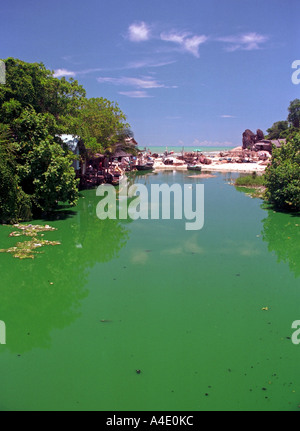 Polluted water at Kao Seng, a village south of Songkhla, southern Thailand. EA9 - Stock Photo