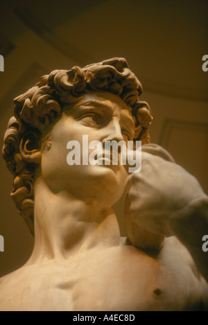 The head of Michelangelo s David housed in the Accademia Galleria dell Accademia Florence Italy - Stock Photo