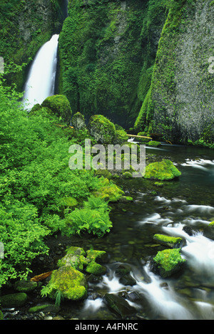 Eagle Creek and Wahclella Falls in the Columbia River Gorge in Oregon - Stock Photo