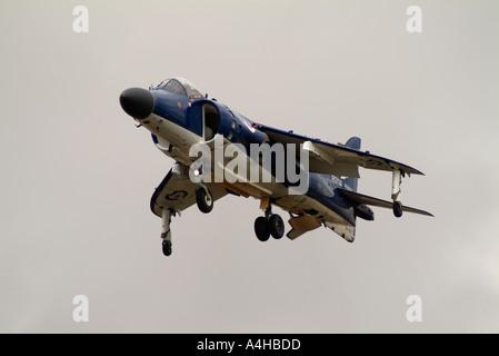 Royal Navy Sea Harrier at the Royal International Air Tattoo 2004 - Stock Photo