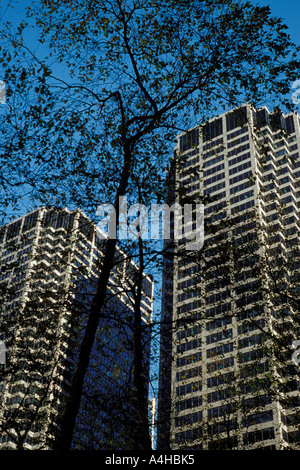 Twin towers of the Chicago Mercantile Exchange Center buildings Chicago Illinois and bare tree on winter day - Stock Photo