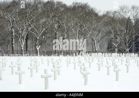 Magical Trees and Crosses, American Cemetery,Madingley, Cambridge - Stock Photo