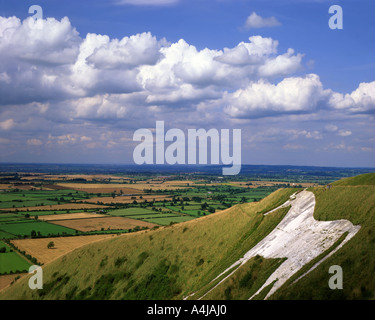 GB - WILTSHIRE:  Westbury White Horse - Stock Photo