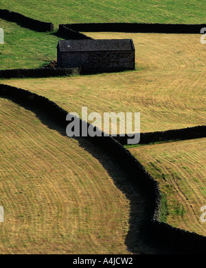 Drystone walls and Barn,near Gunnerside,Swaledale,Yorkshire Dales,England. - Stock Photo