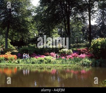Savill Garden, Windsor Great Park, Englefield Green, Berkshie, England, United Kingdom - Stock Photo