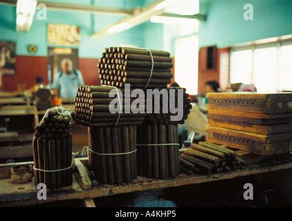 Cuba, Havana, bundles of cigars - Stock Photo