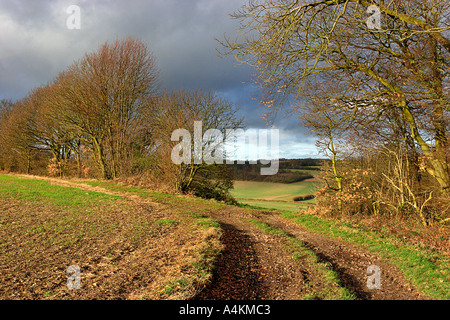 Chiltern Landscape near Great Missenden England UK - Stock Photo