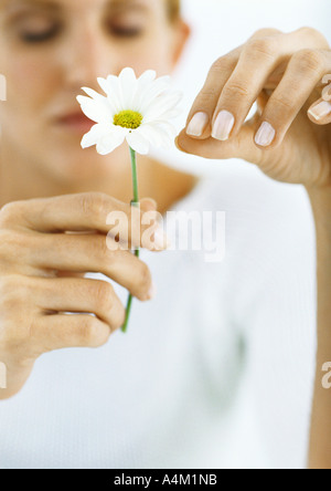 Woman plucking petals from flower with eyes closed - Stock Photo