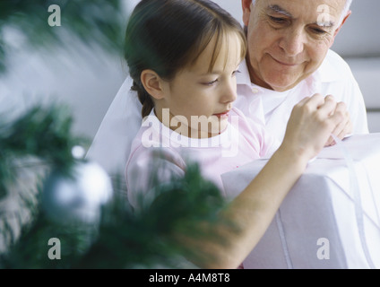 Girl and grandfather opening package, Christmas tree branches in foreground - Stock Photo