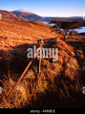 Ben Cruachan viewed from the hills above Ardchattan Priory in evening light - Stock Photo