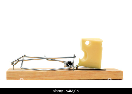 Mouse Trap With Swiss Cheese Stock Photo 4635967 Alamy
