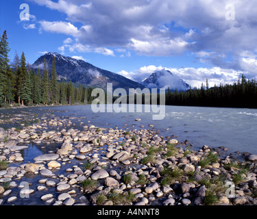 CA - ALBERTA:  Athabasca River in the Rocky Mountains National Park - Stock Photo