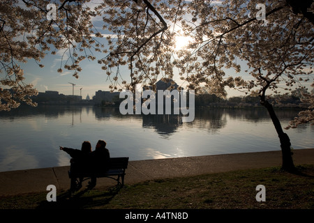 A couple watches the sunrise over the Jefferson Memorial under cherry blossoms during spring in Washington DC - Stock Photo