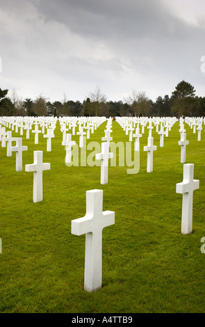 War graves at the American Military Cemetery Coleville sur Mer Normandy France - Stock Photo