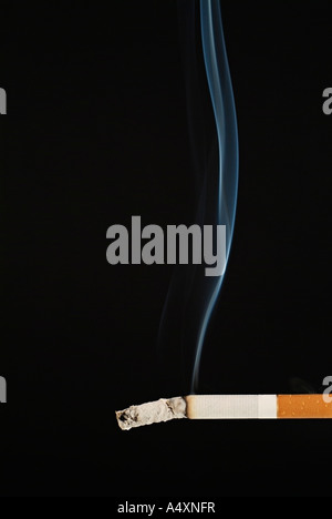 Smoking Cigarette Against a Black Background - Stock Photo