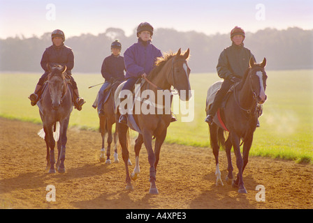 Horses training on The Gallops at Newmarket in Suffolk England UK - Stock Photo