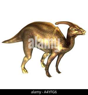 The Parasaurolophus seemed a beside to Saurolophus and in the Cretaceous period. The size amounted to approx. 10m. - Stock Photo