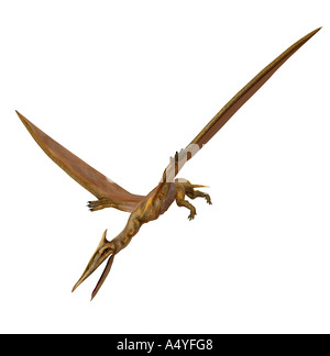 The Quetzalcoatlus northropi was a flight dinosaur with approx. 12 m span and lived in the time of the Cretaceous - Stock Photo