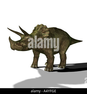 The Triceratops is called three-horn and about 9 m long and in the Cretaceous period occurred. The Triceratops is - Stock Photo
