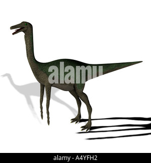 The Gallimimus seemed also chickens to imitators mentioned with a length from more than 6 meters it in the Cretaceous - Stock Photo
