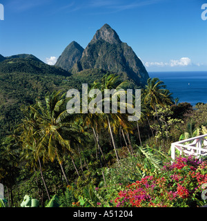 View over valley and palm trees to Petit and Gros Piton mountain peaks famous landmarks St Lucia The Caribbean - Stock Photo
