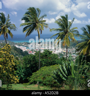 Overlooking Castries and harbour from high hill top garden viewed through palm trees and greenery St Lucia The Caribbean - Stock Photo