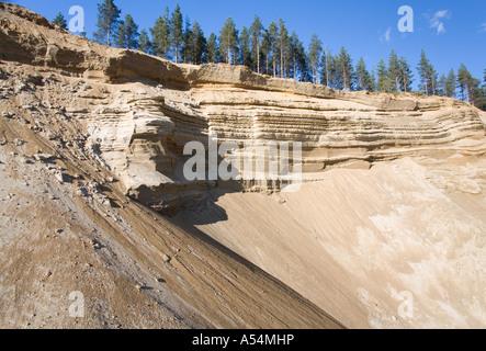 Sandpit wall on a sandy ridge , glacial esker , Finland - Stock Photo