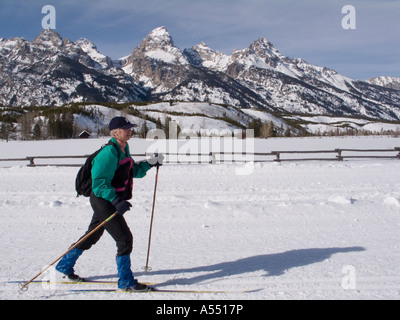 Moose Wyoming A cross country skier glides past the Teton mountain range in Grand Teton National Park - Stock Photo