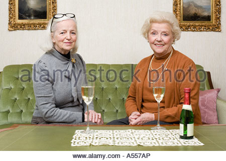 Portrait of friends sharing champagne - Stock Photo