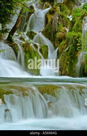 Plitvicer Seen Kroatien water cascades through forest Plitvice Lakes National Park Croatia - Stock Photo