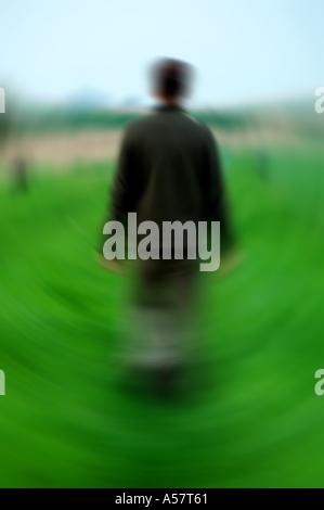 Blurry shot of a man walking  - Stock Photo