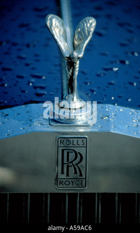 Rolls Royce Logo On The Bonnet Stock Photo Royalty Free Image