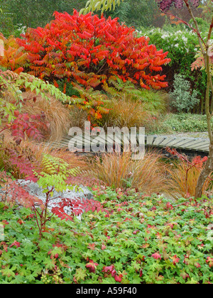 Autumn Garden View Broadview gardens Kent Stock Photo: 368447 - Alamy