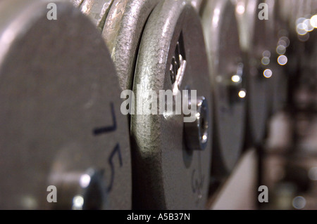 Row of weights in fitness club. - Stock Photo