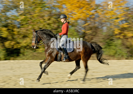 Young dressage rider on back of German horse in canter - Stock Photo