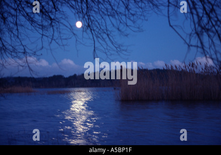 full moon rising over a lake - Stock Photo