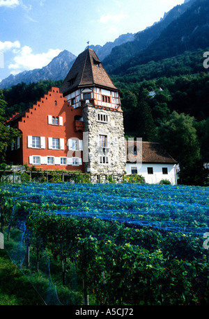 Vaduz Liechtenstein Vinyard of the Prince of Liechtenstein - Stock Photo