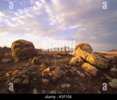 Lichen covered boulders at sunset - Stock Photo