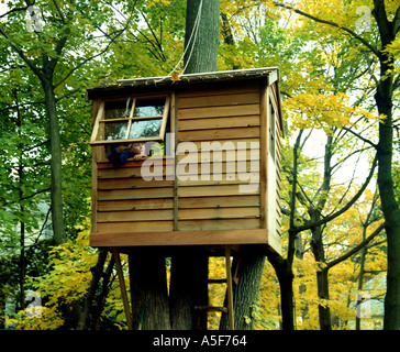 Child looking out of the window of a tree house - Stock Photo