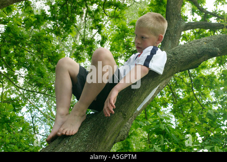 An Unhappy Boy Sitting In A Tree Gripping A Branch Stock