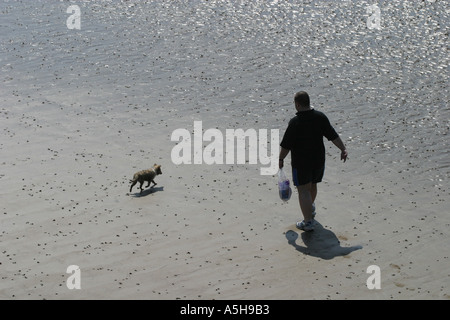 Man walking his dog on the beach viewed from above - Stock Photo