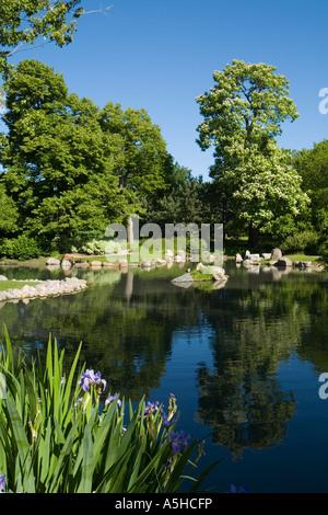 ILLINOIS Chicago Osaka Japanese Garden in Jackson Park iris bloom ...